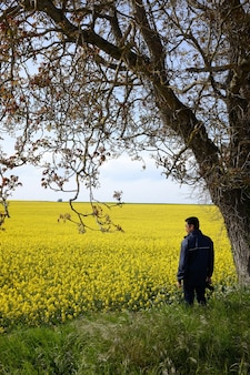 Homem solitário com uma câmera embaixo de uma árvore em um campo com lindas flores amarelas