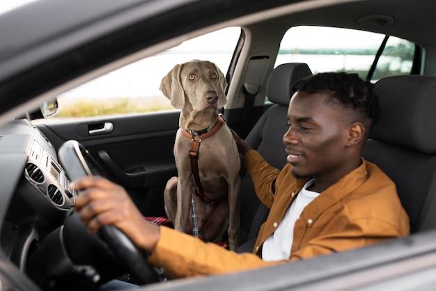 Homem sorridente de tiro médio dirigindo com cachorro