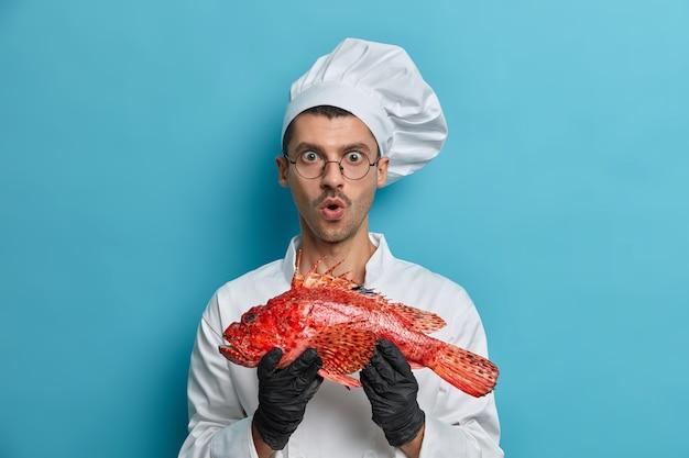 Homem surpreso segura peixe vermelho cru, fica de boca aberta, vai assar ou ferver robalo, vestido de uniforme, luvas de borracha