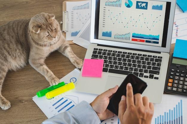 Homem trabalhando em casa, ao lado de seu gato