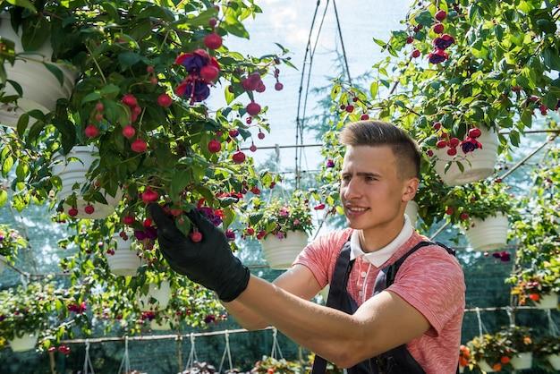 Homem trabalhando em um laranjal cheio de flores verifica a condição das plantas em uma estufa industrial