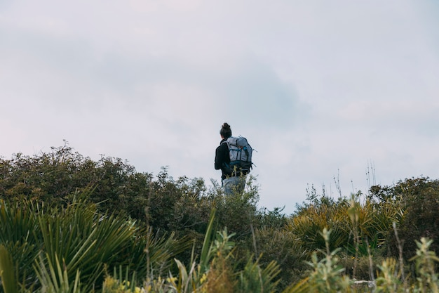 Homem, trekking, em, natureza
