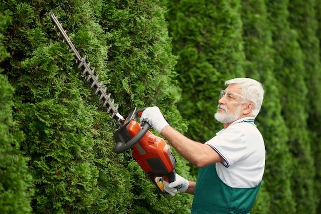 Homem usando orelha e rosto proteção corte hedge.