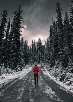 Homem viajante caminhando em uma estrada suja na floresta com neve coberta no parque nacional yoho