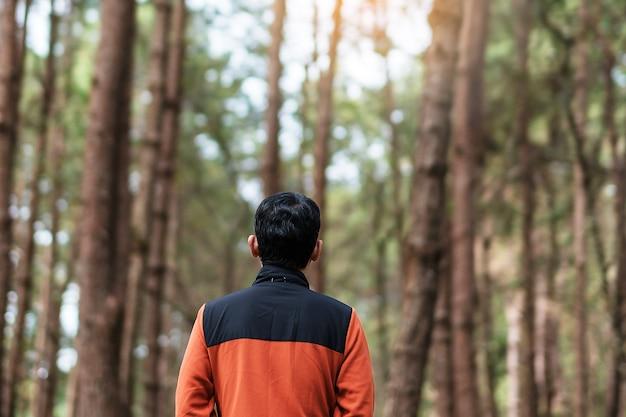 Homem viajante feliz vista traseira de pé e olhando para um fundo borrado de floresta de pinheiros