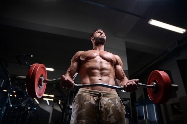 Homens atléticos fisiculturista forte sexy bombeando os músculos com halteres