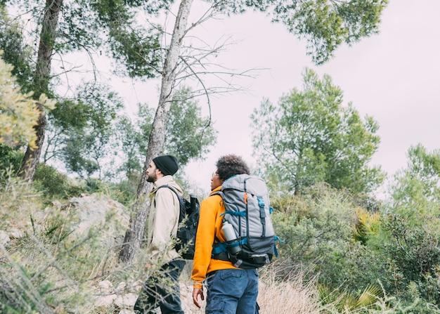 Homens, trekking, em, natureza