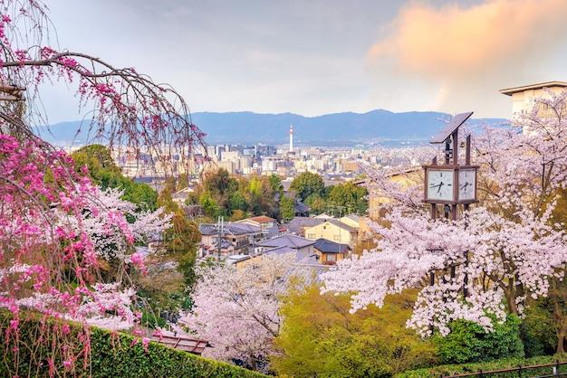 Horizonte da cidade de kyoto com sakura no japão