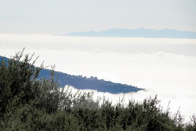 Horizonte da montanha acima das nuvens