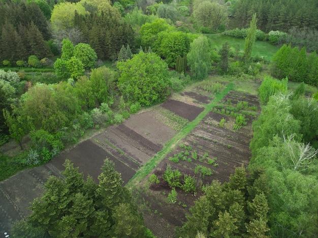 Horta verde, europa ucrânia, vista superior do drone
