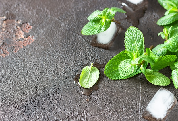 Hortelã fresca do jardim e cubos de gelo na ardósia marrom velha. copie o espaço.