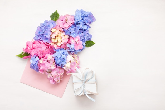 Hortensia flores