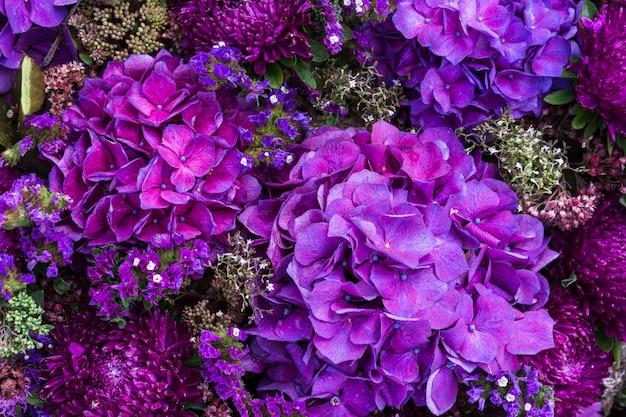 Hortênsia roxa flores fundo na vista superior
