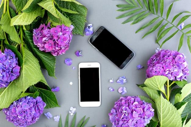 Hortênsias roxas frescas com folhas verdes com smartphone na superfície cinza