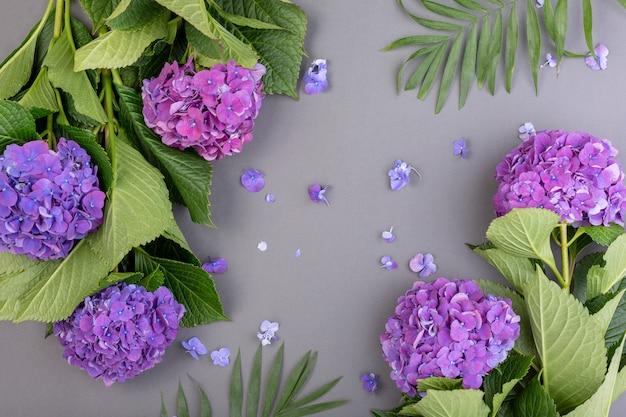 Hortênsias roxas frescas com folhas verdes na superfície cinza
