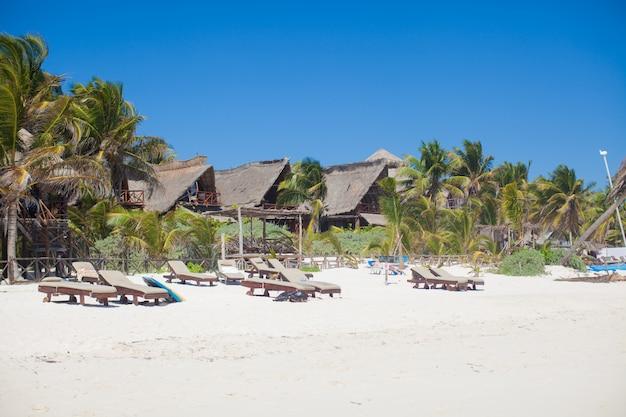 Hotel de luxo no resort tropical na costa do oceano com palmeiras