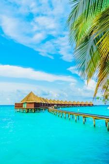 Hotel tree house paraíso paisagem