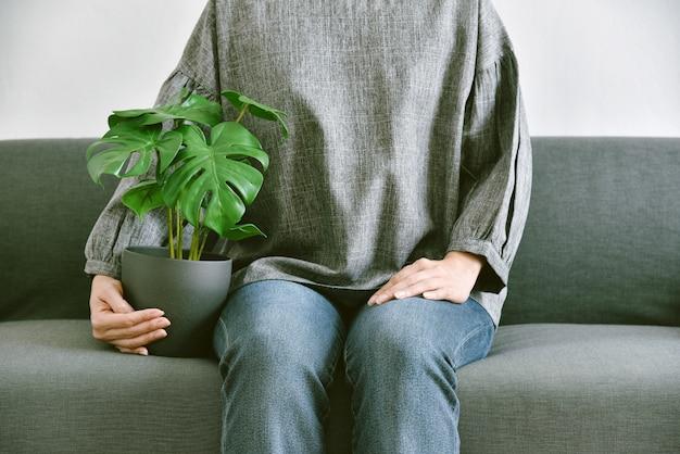 Humano e natureza houseplants em sala de estar para purificação de ar.