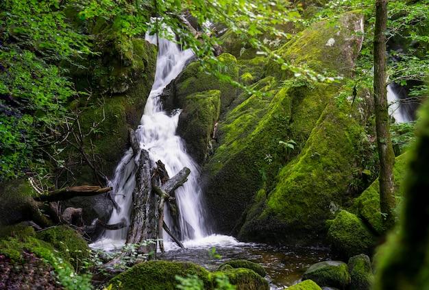 Ideia bonita do panorama da paisagem da queda da água na floresta verde no verão, força de ghyll, ambleside, parque nacional do distrito do lago, reino unido