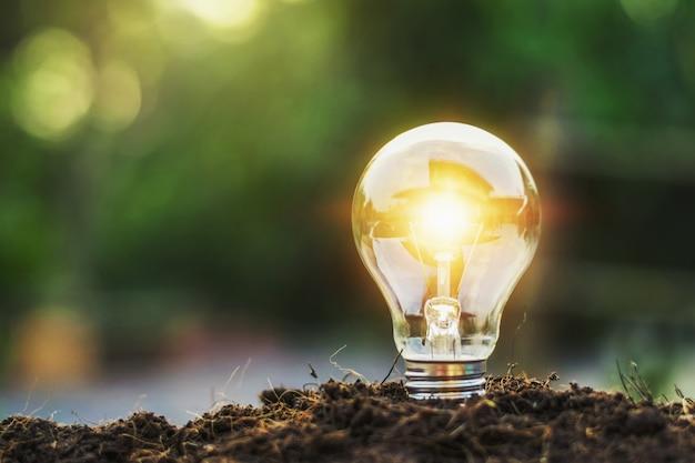 Idéia conceito, poupar energia, bulbo leve, e, luz solar