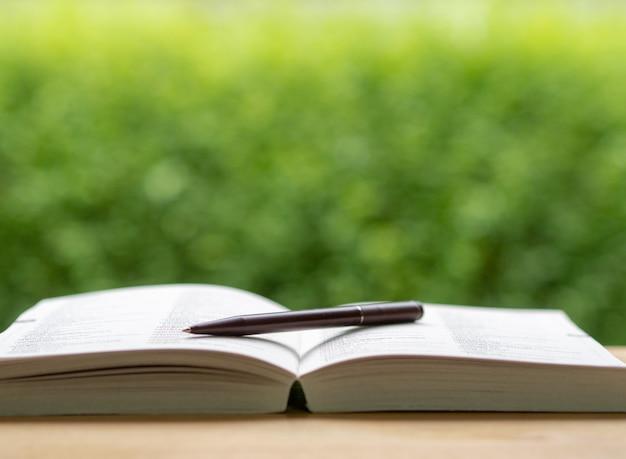 Idéia de conceito de educação com fundo de natureza