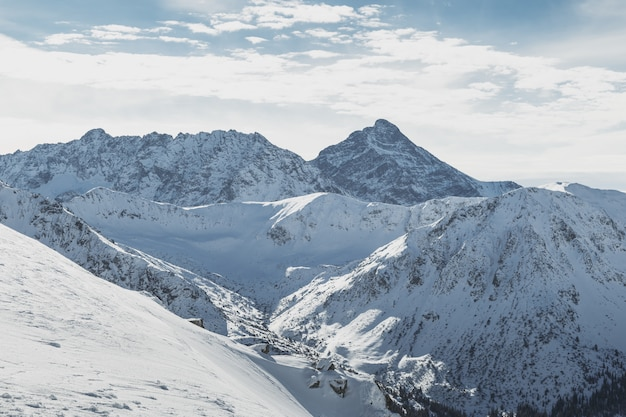 Ideia larga dos picos nevado das montanhas de tatry na beira de poland e de slovakia.