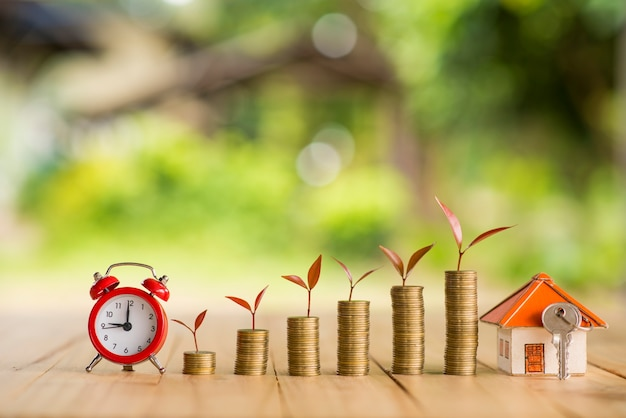 Idéias de economia de dinheiro para casas, idéias financeiras e financeiras, economizando dinheiro na preparação para o futuro, crescimento de moedas