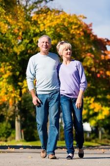 Idosos no outono ou outono andando de mãos dadas
