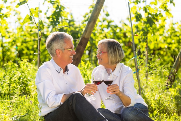 Idosos sentados na vinha bebendo vinho tinto