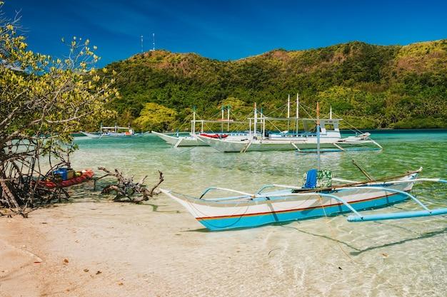 Ilha da cobra e barcos de turismo diário atracados na lagoa, el nido, palawan, filipinas