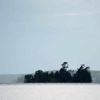 Ilha, de, árvores, lago, de, a, madeiras, ontário, canadá