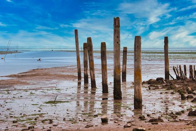 Ilha de texel - holanda - northsea wadden