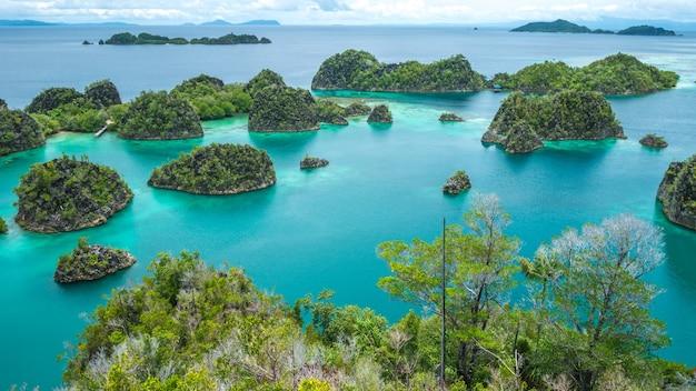 Ilha painemo, lagoa azul, raja ampat, papua ocidental, indonésia