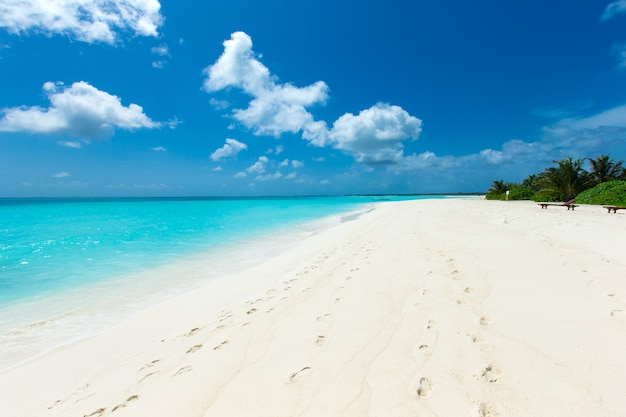 Ilha tropical das maldivas com praia de areia branca e mar