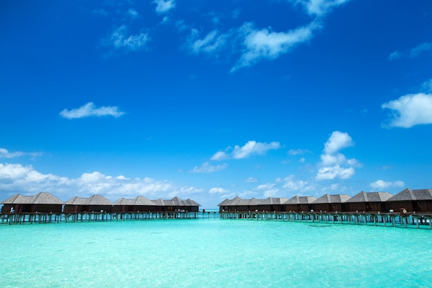 Ilha tropical das maldivas com praia de areia branca e paisagem marítima