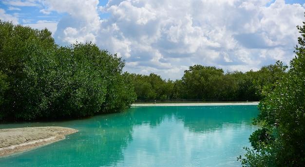 Ilha tropical de holbox em quintana roo méxico