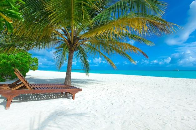 Ilha tropical maldivas com praia de areia branca e mar