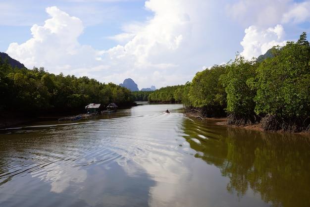 Ilhas da opinião da paisagem impressionante no sul da tailândia.