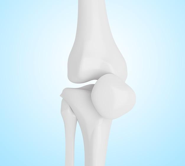 Ilustração 3d de ossos do joelho humano
