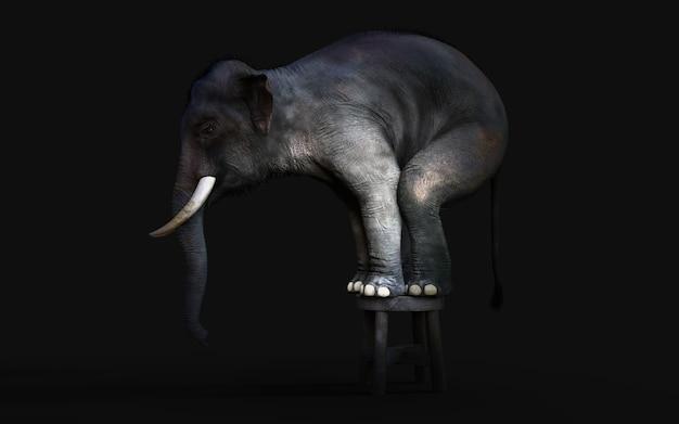 Ilustração 3d de um elefante de pé em um pequeno banquinho isolado no fundo preto escuro com trajeto de grampeamento.