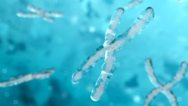Ilustração 3d do dna cromossômico