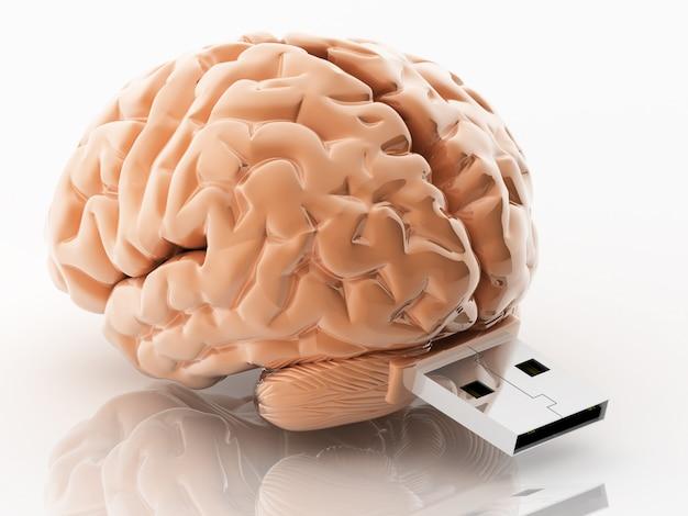 Ilustração 3d usb em forma de cérebro
