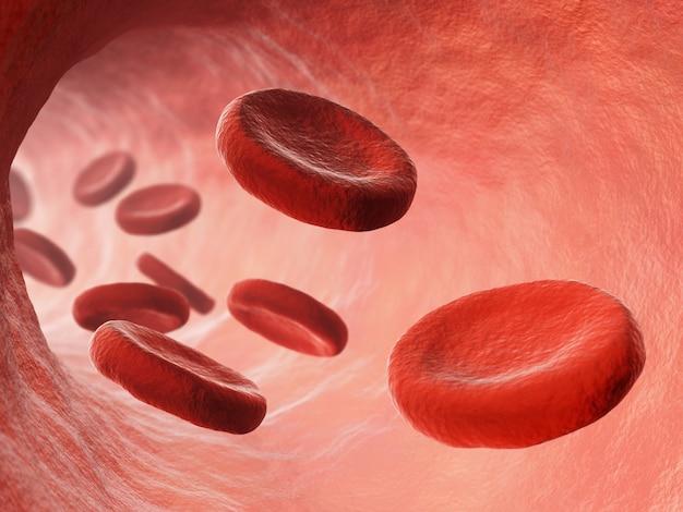 Ilustração da corrente sanguínea