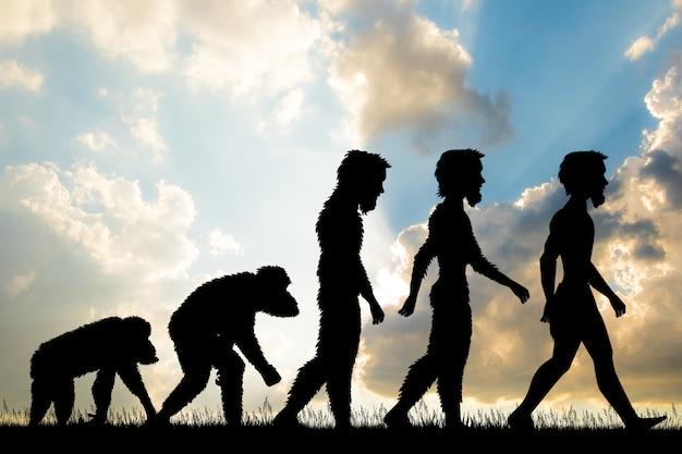Ilustração da evolução humana