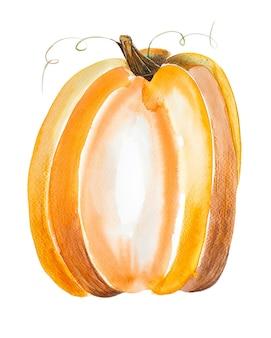 Ilustração de abóbora laranja isolada no fundo branco