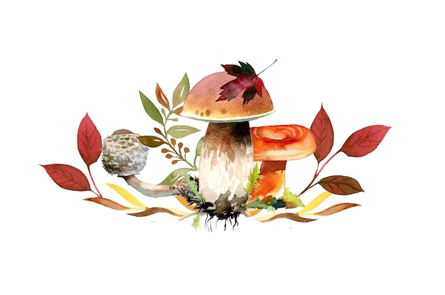 Ilustração de folhas e cogumelos de outono pintados à mão em aquarela