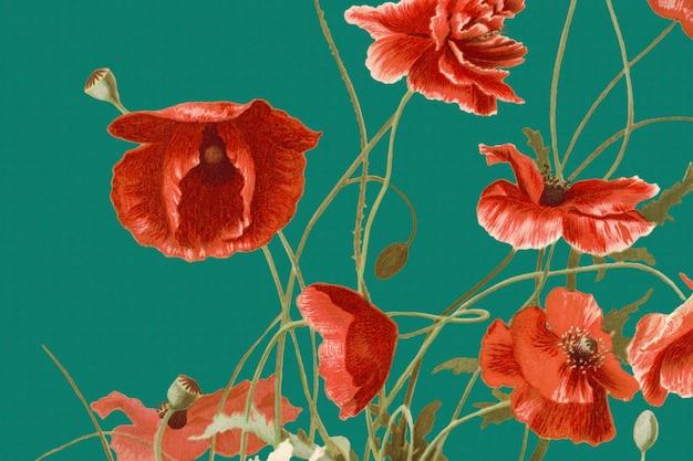 Ilustração de fundo de papoula vermelha florescendo, remixada de obras de arte de domínio público