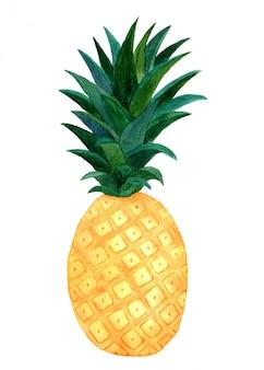 Ilustração em aquarela de abacaxi. fruta tropical