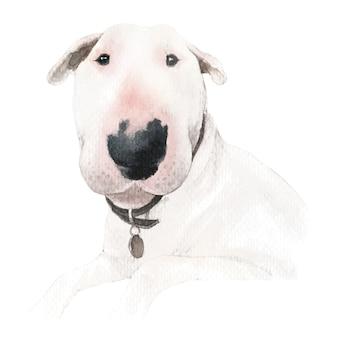 Ilustração em aquarela de cachorro bull terrier