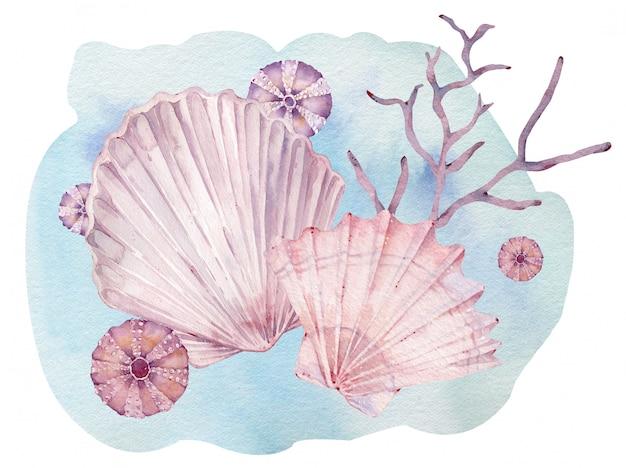 Ilustração em aquarela de conchas subaquáticas e algas.